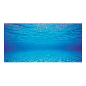 Poster aquarium achat vente poster aquarium pas cher for Fond aquarium