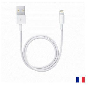 CÂBLE INFORMATIQUE Apple Câble Lightning vers USB - 1 m