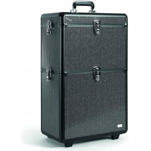 VALISE - BAGAGE Valise Coiffure Backstage Strass XL