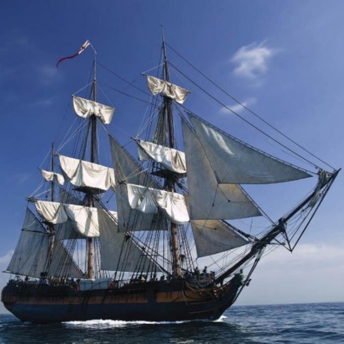 Poster bateau pirate achat vente poster bateau pirate - Voile bateau pirate ...