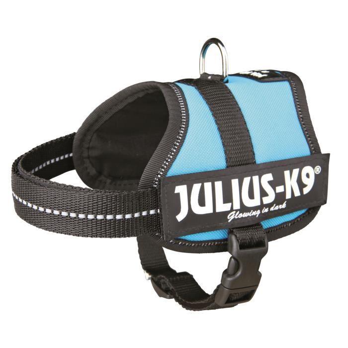 Harnais Power Julius-K9 - Baby 2 - XS-S : 33-45 cm-18 mm - Aigue-marine - Pour chien