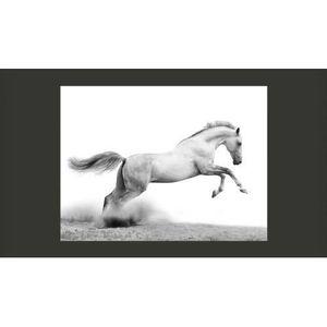 papier peint cheval geant achat vente pas cher. Black Bedroom Furniture Sets. Home Design Ideas