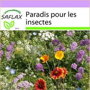 GRAINE - SEMENCE SAFLAX - Paradis pour les insectes - 1000 graines