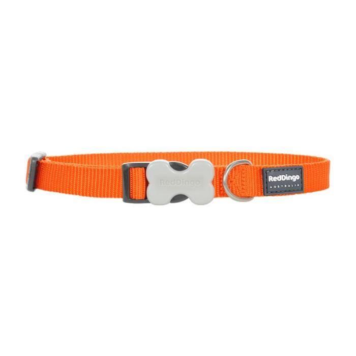 Red Dingo Collier 40-60 Cm 25mm Orange