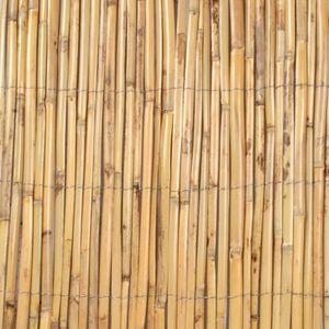 Canisse roseau fendu 1 x 5 m