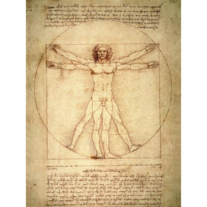 Leonardo Da Vinci Poster Reproduction - Homme De Vitruve, Vers 1490 (80 x 60 cm) - Achat / Vente ...