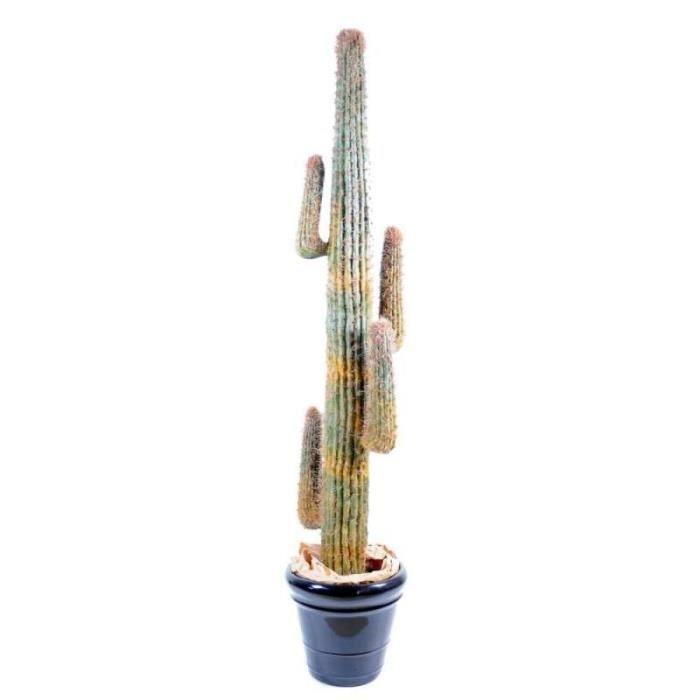 Arbuste sur tige achat vente arbuste sur tige pas cher for Arbuste artificiel exterieur pas cher