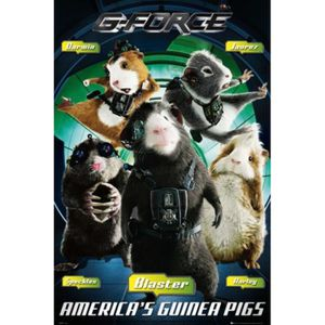 AFFICHE - POSTER Mission G Poster - Groupe (91 x 61 cm)
