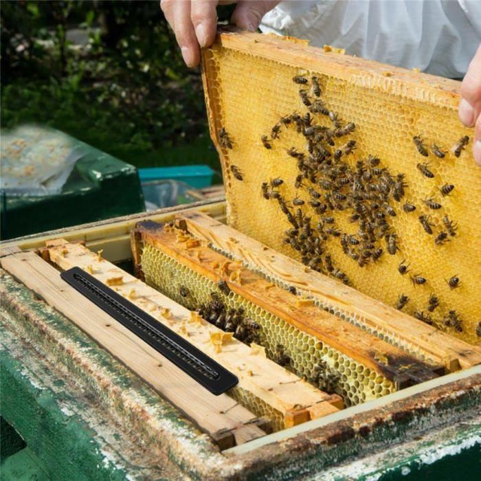 5x Small Hive Better Beetle Trap Sans Poison Pesticides Outils D'apiculture Noir