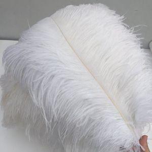 Plume de déco 100PCS plumes d'autruche 30-35cm accessoires bijou