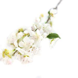 Fleur de cerisier artificiel achat vente fleur de for Achat de fleurs