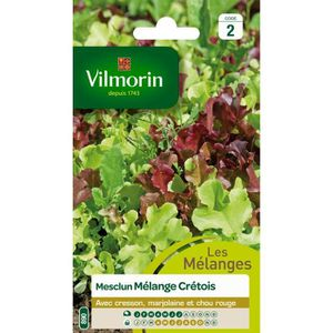 GRAINE - SEMENCE VILMORIN Mesclun cretois