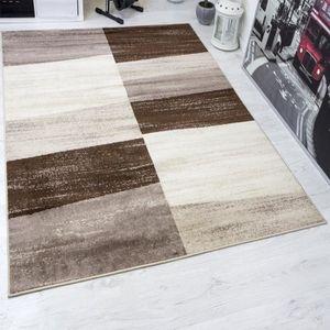 Salon Moderne Beige Marron tapis salon moderne marron et beige - achat / vente pas cher