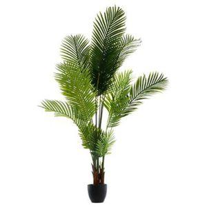 Palmier exterieur achat vente palmier exterieur pas for Vente palmier artificiel