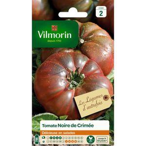 VILMORIN Tomate noire de Crimée Sachet de graines