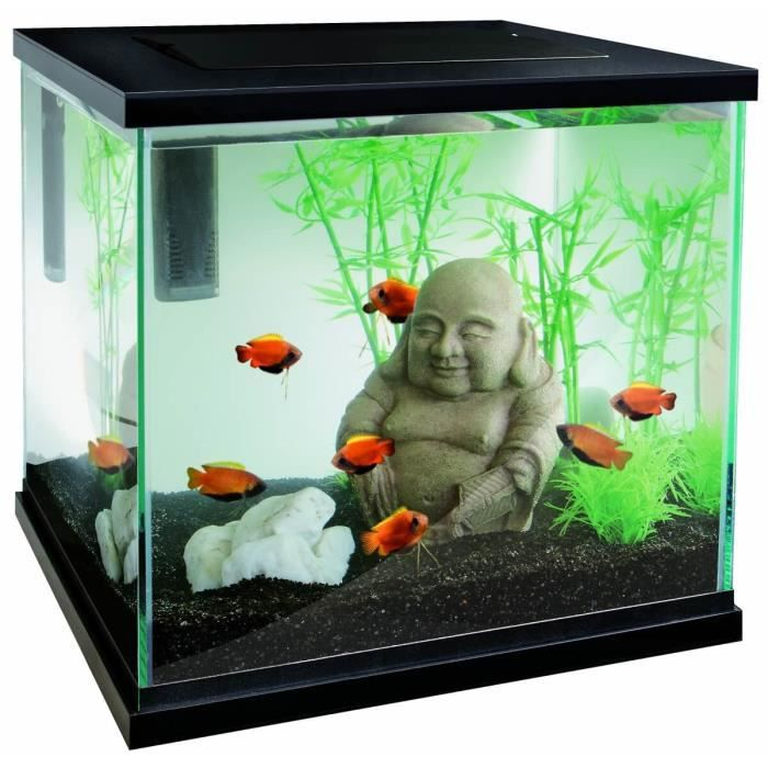 Aquarium sf zen 30 30 litre 30cm x 30cm x 30cm achat for Achat aquarium design