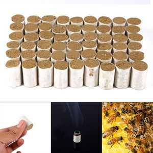 ENFUMOIRS 54pcs Outils Apicoles Bombes Fumée d'herbes Chinoi