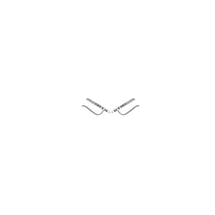 MARY JANE - Boucles doreilles Argent - Long:20mm - Larg:7mm - Femme - Feuille - Laurier - Pendantes