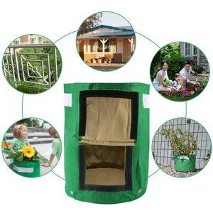 plant de pomme de terre achat vente plant de pomme de terre pas cher soldes d s le 10. Black Bedroom Furniture Sets. Home Design Ideas