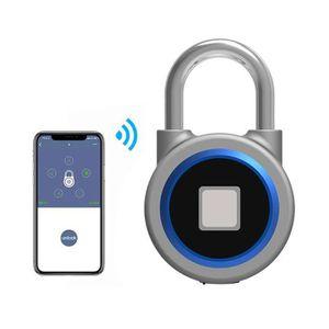 SERRURE - BARILLET Serrure Empreinte Digitale électronique Intelligen