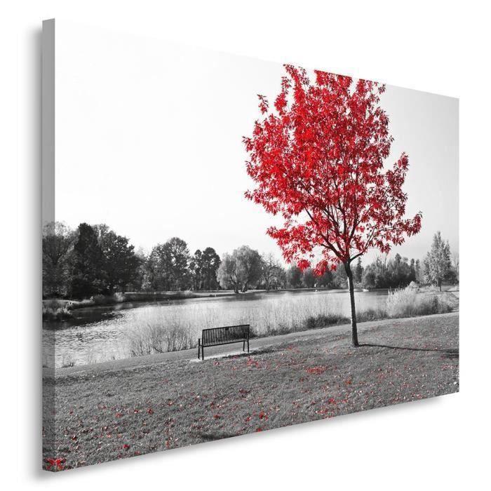 tableau d co mural imprim 40x50 vue paysage arbre noir et blanc rouge achat vente tableau. Black Bedroom Furniture Sets. Home Design Ideas