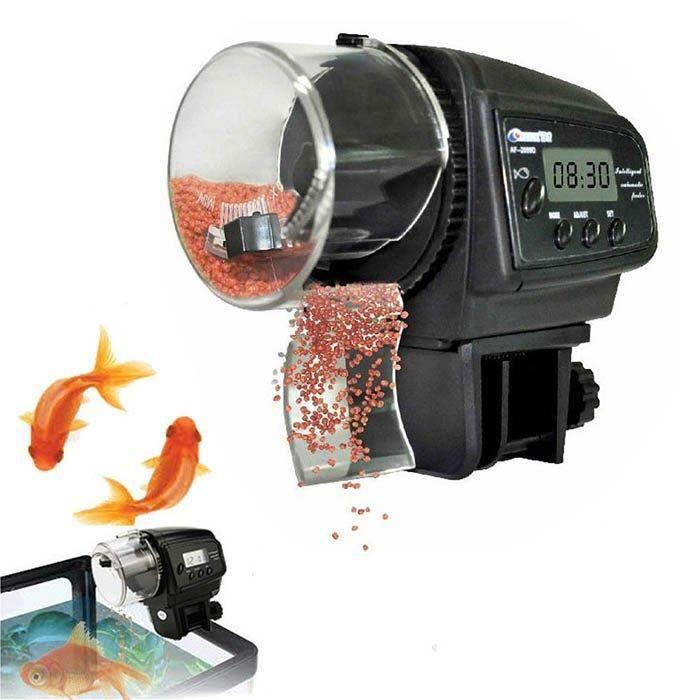 Achat Poisson D Aquarium aliment pour poisson d aquarium - achat / vente pas cher