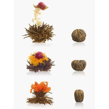 6 Fleurs de Thé noir Abloom 08f50de3082