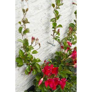 treillis pour plantes grimpantes achat vente pas cher. Black Bedroom Furniture Sets. Home Design Ideas