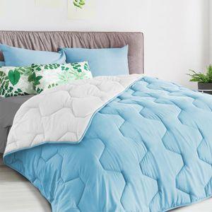 COUETTE Couette bicolore bleu et blanc 220 x 240 CM 300 gr