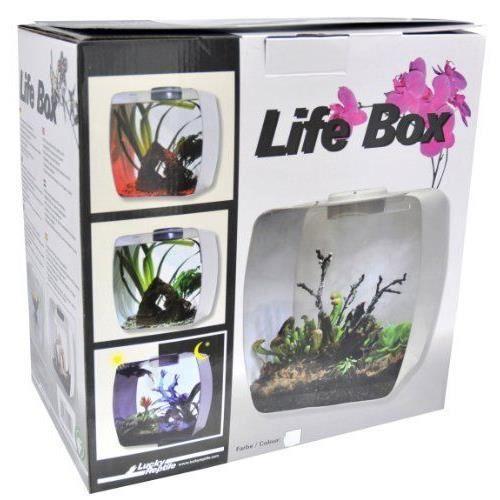 DÉCO ARTIFICIELLE Lucky Reptile Life Box Terrarium design