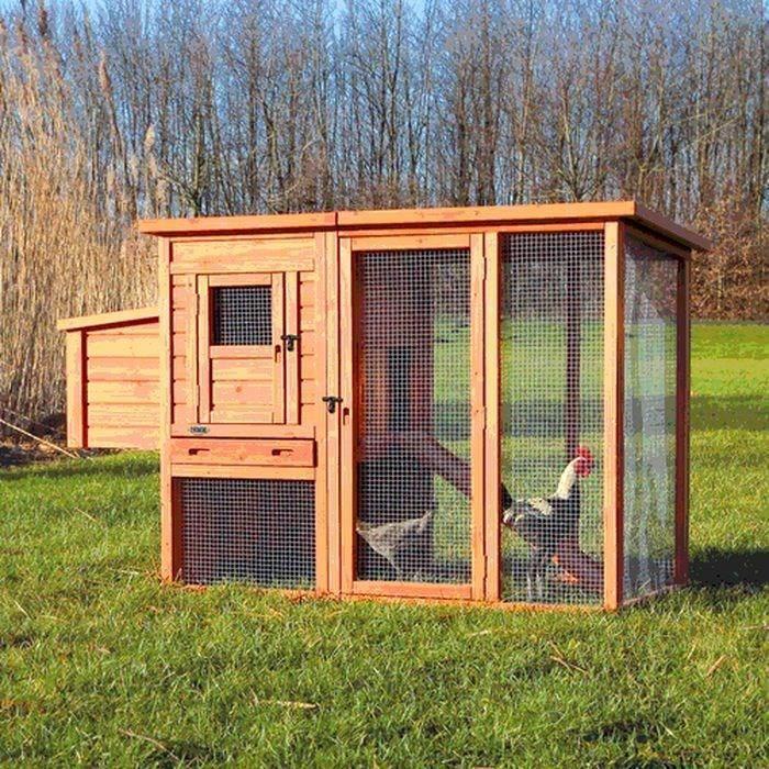 trixie natura poulailler pour poules 170 105 77cm achat. Black Bedroom Furniture Sets. Home Design Ideas