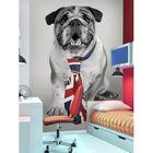 Complètement et trop extrême Bulldog anglais - affiche murale - Achat / Vente affiche - poster #JP_54