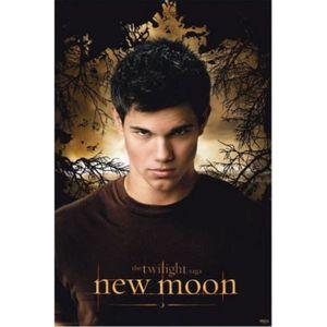 AFFICHE - POSTER Twilight Poster - Tentation, Jacob Arbres I (91...