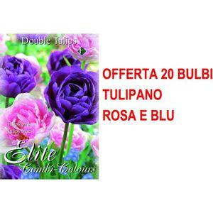 BLU-RAY FILM OFFERTA 20 BULBI TULIPANO DOUBLE MIX BLUE PINK Mix
