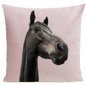COUSSIN ARTPILO - Coussin CURIOUS HORSE Coton déperlant -