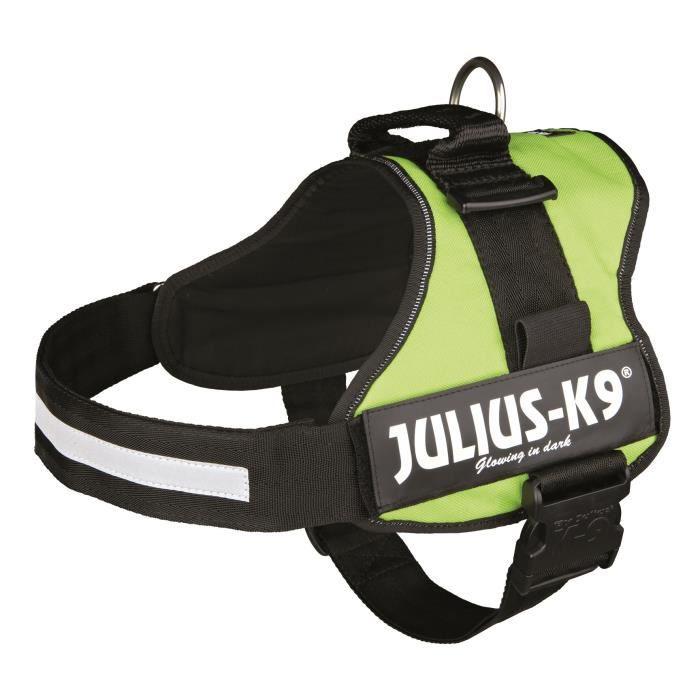 Harnais Power Julius-K9 - 3 - XL : 82-118 cm-50 mm - Vert pastel - Pour chien