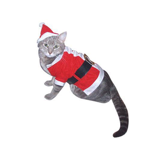 deguisement pour chat noel Costume Noël pour chat   Achat / Vente déguisement   panoplie  deguisement pour chat noel