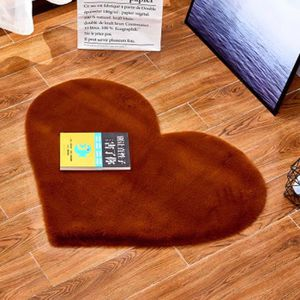 TAPIS Tapis de salon ou chambre - Microfibre extra doux