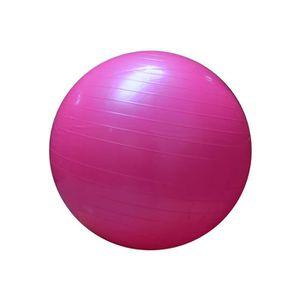 BALLON SUISSE-GYM BALL Ballon Sport Yoga Pilates Rose Phisiotherapie Abdo