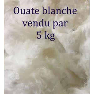 OUATE Ouate de Rembourrage 5kg de Ouate Cellulose Fibres