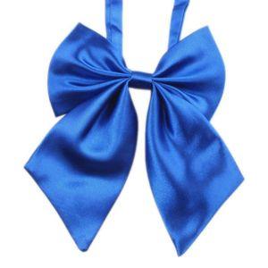 CRAVATE - NŒUD PAPILLON exquisgift®Mode unique grand Bow cravate cadeau de
