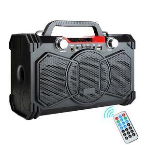 ENCEINTE NOMADE Haut-parleur Bluetooth 30W Portable Haut-parleurs
