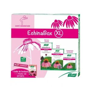 FIXATION - SUPPORT TV EchinaBox XL A.Vogel