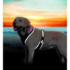 TRIXIE Flash Harnais soft L?XL: 65?100 cm noir pour chien