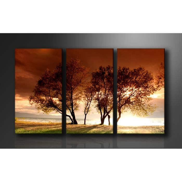 tableau triptyque imprim 160x90 cm arbre achat. Black Bedroom Furniture Sets. Home Design Ideas