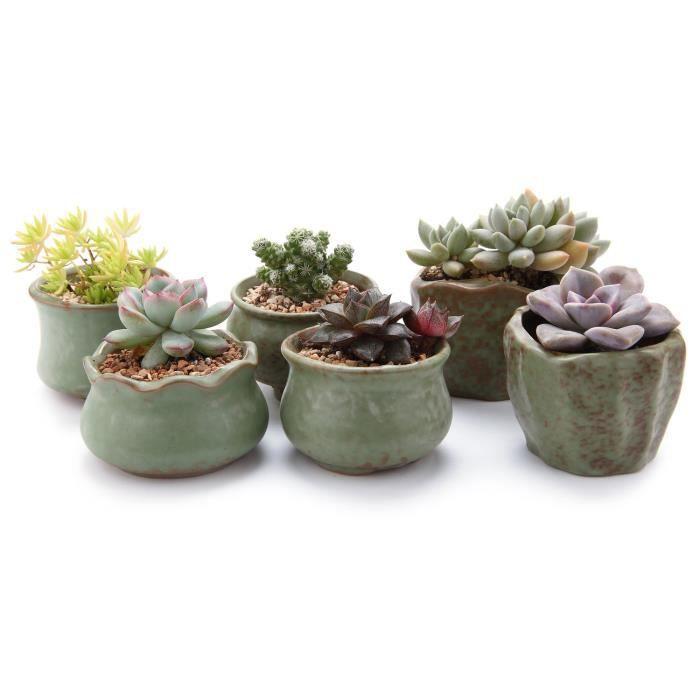 T4u Collection Printemps Serie Kit De Complet Plante En Pot Pots De