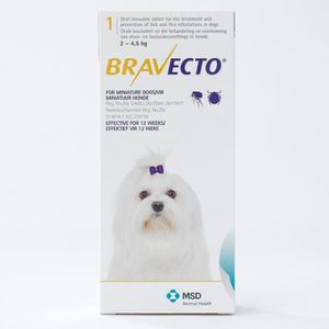 ANTIPARASITAIRE Bravecto 112 mg pour les très petits chiens de 2 à