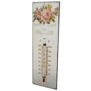 thermometre decoratif achat vente pas cher
