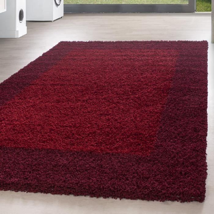 Shaggy Shaggy Carpet Carpet frontière modèle salon chambre - différentes  couleurs et tailles [rouge, 240x340 cm ]