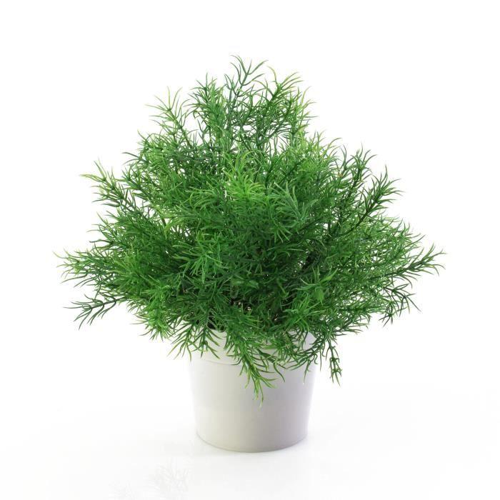 petite plante verte artificielle asparagus dans un pot d coratif trait anti uv 25 cm. Black Bedroom Furniture Sets. Home Design Ideas